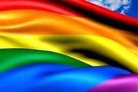 Проблемы гомосексуалистов в Украине. Марш гомосексуалистов (ЛГБТ) в Киеве 6 июня 2015 и Правый сектор. А кто кого и как ущемляет в Украине за гомосексуализм, собственно?
